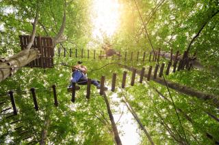 Ropes park adventure